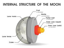 The internal structure of the moon That is divided into layers.