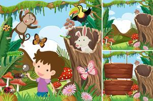 Drei Waldszenen mit Jungen und Tieren