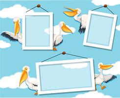 Pelican on photo frame