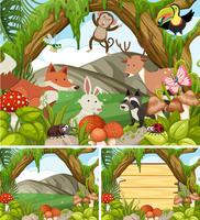 Three forest scenes with animals and plants