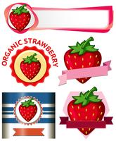Strawberry Banner on White Background