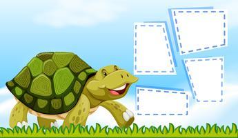 Sköldpadda på sedelmall