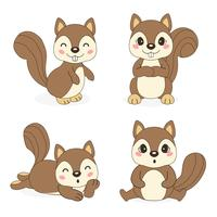 cute squirrel in different pose. Vector illustration.