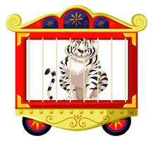 White tiger in circus cage