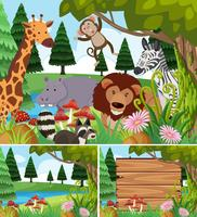 Background scenes with wild animals and board vector