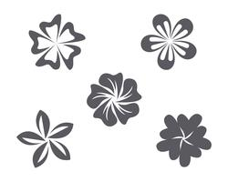 Flor de jasmim ícone vector ilustração logo modelo de design