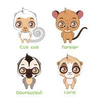 Conjunto de primatas de tamanho menor
