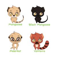 Set of mongoose species illustrations vector
