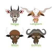 Samling av horned djurarter