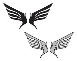 Wing falcon bird-logo