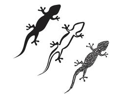 Lizard Chameleon Gecko Silhouette svart