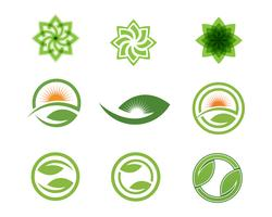 Logos of green Tree leaf ecology vector