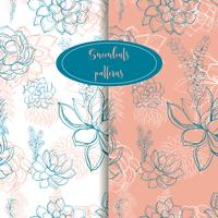 Set of seamless patterns. Succulents. Graphics. Gentle tone. Vector.