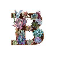 Brev B. Succulenter. Alfabet. Vattenfärg. Grafik.