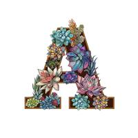 Letter A. Succulents. Alphabet Watercolor Graphics Vector