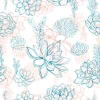 Seamless patterns. Succulents. Graphics Vector illustration.