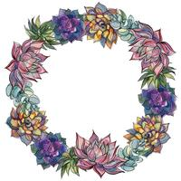 Wreath of succulents. Watercolor. Vector illustration