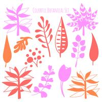 Vector hand drawn botanical elements