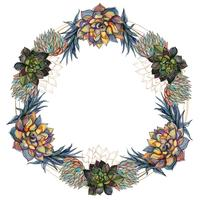 Flower wreath of succulents festive frame. Vector.