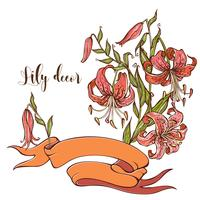 Holiday card with ribbon and bouquet of lilies. Vector.