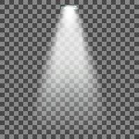 Stage illuminated spotlight vector