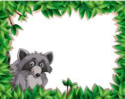 Raccoon sul modello di nota