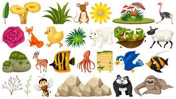 Set von Tier und Pflanze