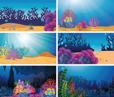 Set of underwater scene