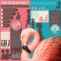 Un gráfico que muestra humanos y animales.