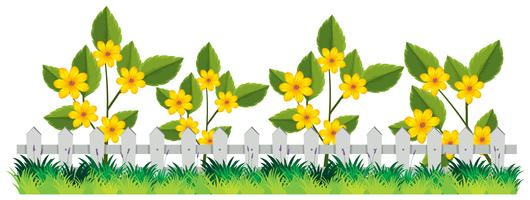 Une belle clôture de fleurs