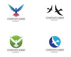 Le ali dell'uccello firmano le icone astratte del modello