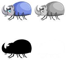 Set of beetle on white background