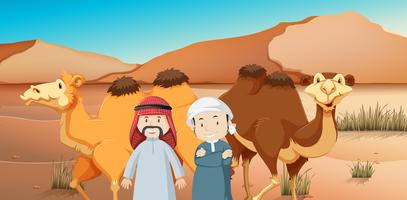 Two arab men and camels in desert land