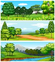 Três cenas de floresta e campos
