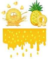 A pineapple on white background