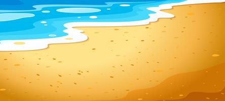A close up beach background vector