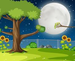 En natt trädgård bakgrund