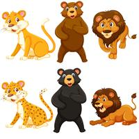 Set of whild animal character