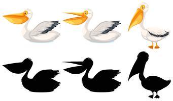 Conjunto de personajes del pelícano.