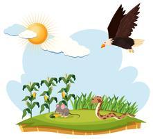 Escena con águila, ratón y serpiente en una granja
