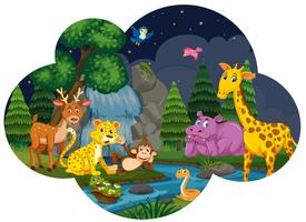 Animales salvajes en la escena nocturna del río.