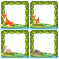 Set of wild animal frame vector