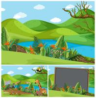 Scènes de montagne avec beaucoup d'animaux