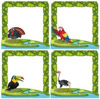 Set van vogels op aard frame