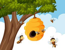 Bumble bees around beehive vector