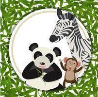 Animais diferentes dentro de um quadro de bambu