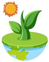 Plant growing out of globe concept vector