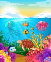 Sea animals swimming under the ocean