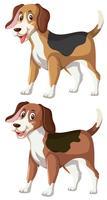 Een set van vrolijke beagle