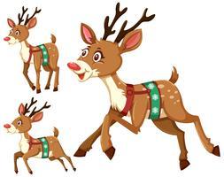 Ensemble de cerfs de Noël